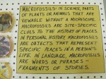 Macrofossils - text